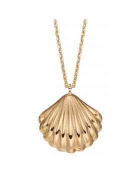 Shell Necklace (GN349)
