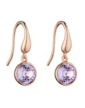 Round Violet Drop Earrings E5725M