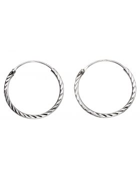 Small Twisted Hoop Earrings (H248)